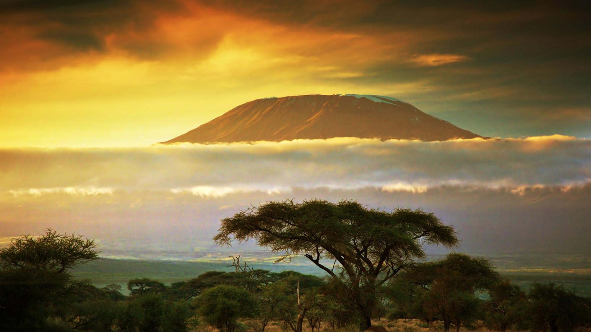 африка фото природы
