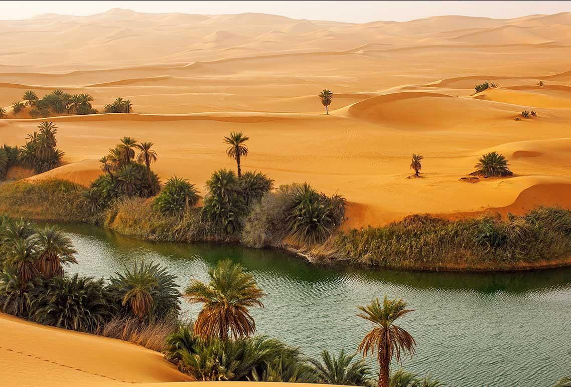 понимает анализирует оазисы в пустыне сахара фото тату