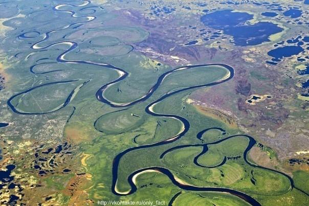 фотографии полуостров ямал