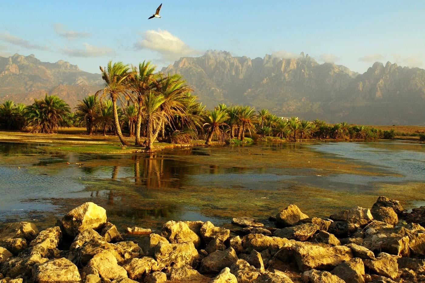 Картинки йемен природа достопримечательности