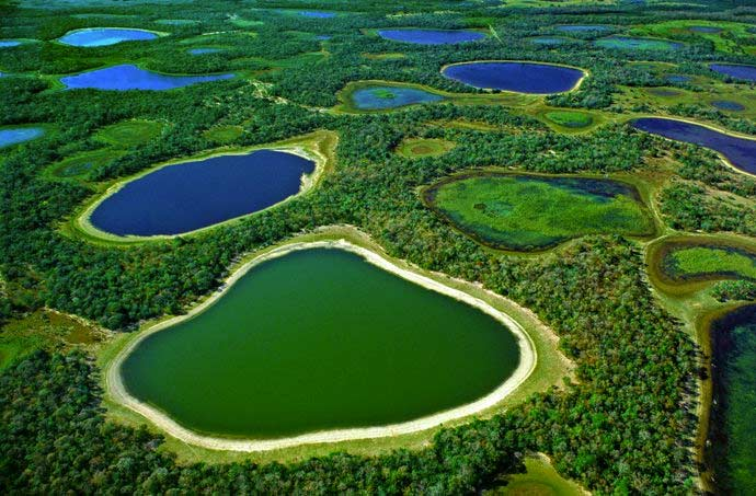 an analysis of the environmental degradation in the pantanal wetlands the largest wetlands in the wo Late holocene palynology of a saline lake in the pantanal of nhecolândia, brazil full article  the brazilian pantanal is the largest tropical wetland on earth (por 1995 por fd 1995 the pantanal of mato grosso (brazil)—world's largest wetlands  environmental degradation in the pantanal ecosystem.